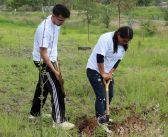 Segunda Etapa de Campaña de Reforestación