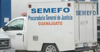 semefo