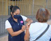 Guanajuato mantiene en existencia más de 400 mil diferentes tipos de vacunas